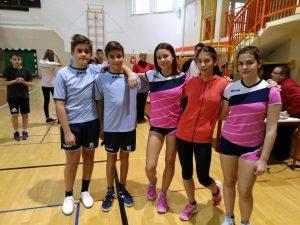 Področno ekipno tekmovanje v badmintonu