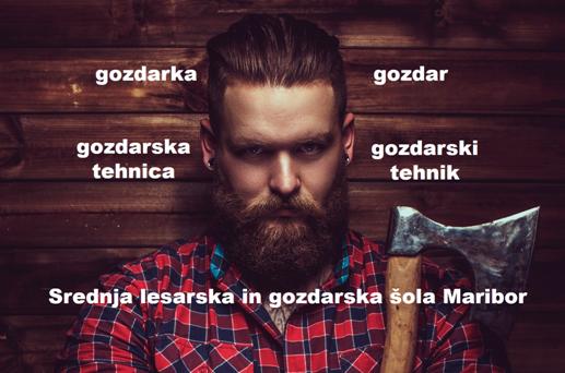 Kako je biti gozdar na Srednji lesarski in gozdarski šoli Maribor – spletni dogodek